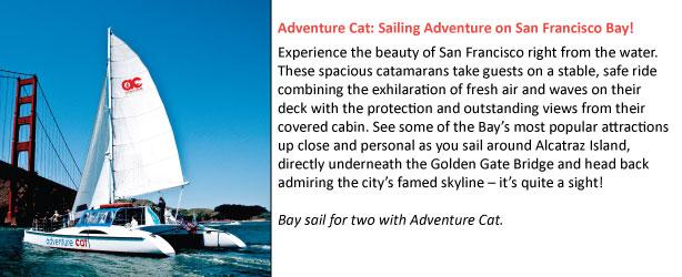2-adventure-cat